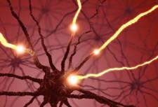 neurona transmitiendo dolor de espalda