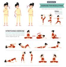 estiraminetos para el dolor de espalda